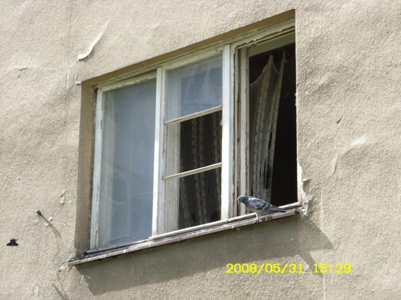http://kolejkamarecka.pun.pl/_fora/kolejkamarecka/gallery/64_1213210156.jpg