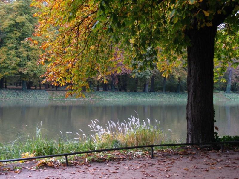 http://kolejkamarecka.pun.pl/_fora/kolejkamarecka/gallery/91_1223495823.jpg