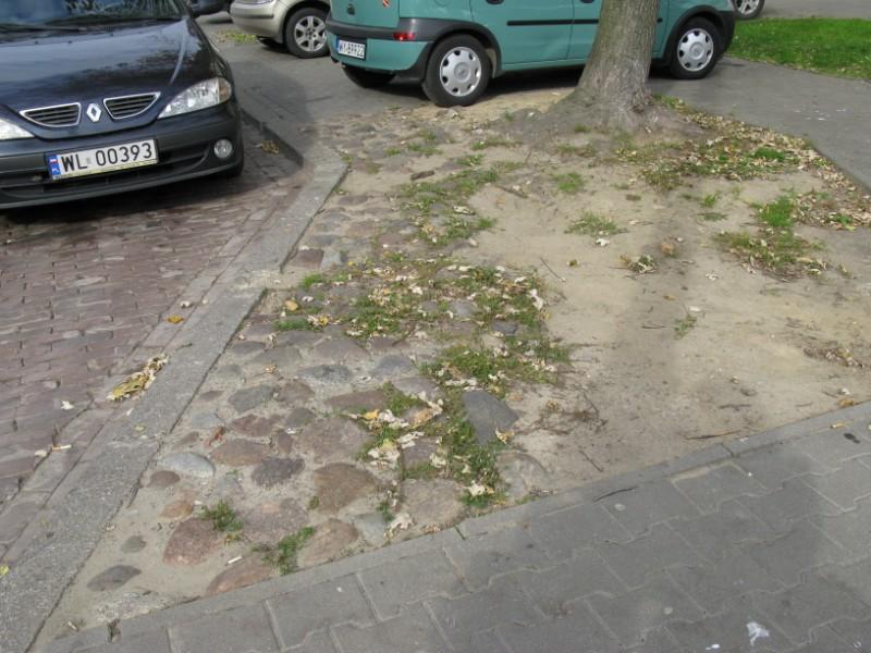 http://kolejkamarecka.pun.pl/_fora/kolejkamarecka/gallery/91_1223982317.jpg